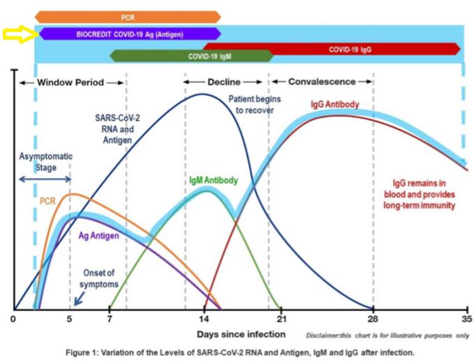 Prueba rápida de antígeno de SARS-CoV-2 Biocredit– Pack 20 test_1